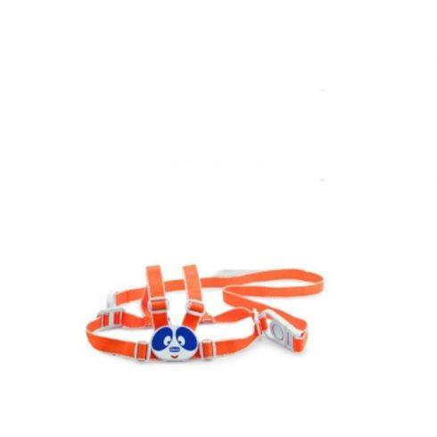 Chicco First Steps biztonsági bébikantár 12m+ Ch06839040